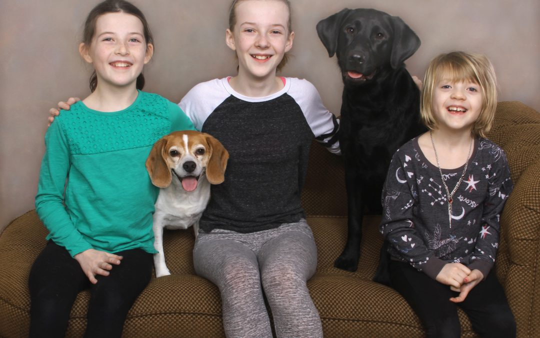 Kids and Dogs–Fun Together in a Portrait